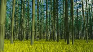 Tg4_bamboo6s