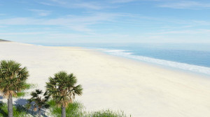 Tg4_beach12_2s