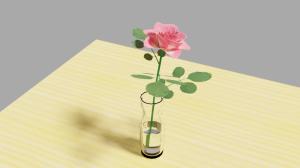 Rose_t8